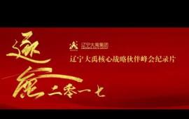 辽宁大禹集团2017合作伙伴峰会纪录片 (84播放)