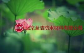 北京圣洁防水企业宣传片 (28播放)